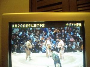 この字幕が出ているテレビは何らかの対策が必要です!